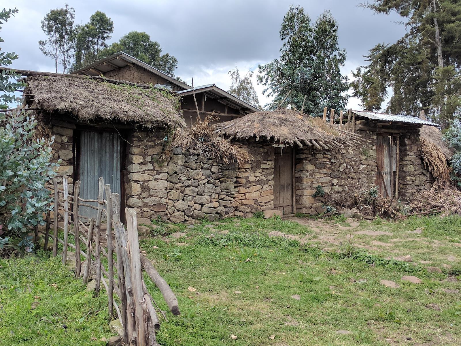 thatched hut.jpg