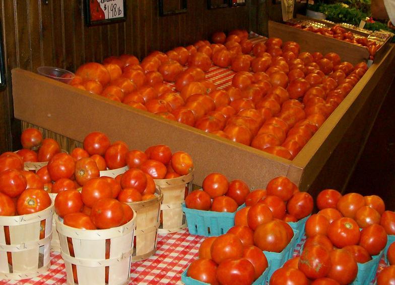 Tomatoes_001_edited.jpg