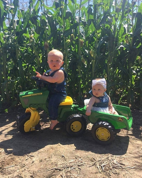 family fun on the farm