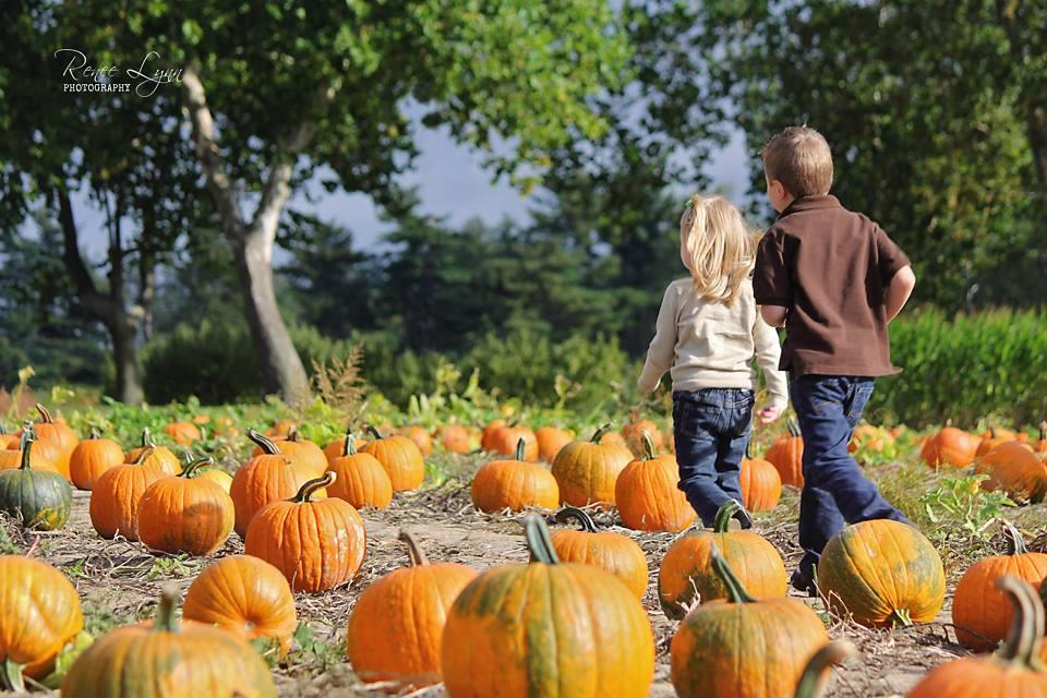FALL Package #3 First 10 adults FREE   $16.50 per child  Hayride, Chicken Dance with Rudy the Rooster, Fun in the Learning Barn, Feed for the Animals, Space Rental - 2 hours  While on the hayride, each child will stop in the Pumpkin Patch and pick a pumpkin!   $16.50 per child, $4.00 per each additional adult going on hayride    FALL Package #4  Package 3 plus each child will get a hot dog or slice of pizza & choice of two beverages by the pitcher or juice boxes.   $19.50 per child, $4.00 per each additional adult going on hayride