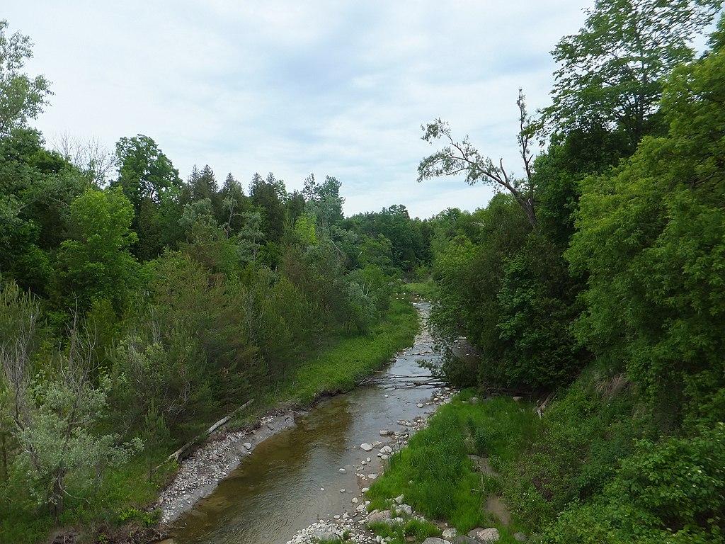1024px-Little_Rouge_Creek.jpg