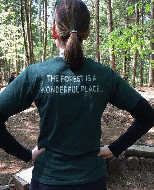 The+Forest+is+a+Wonderful+Place.jpg