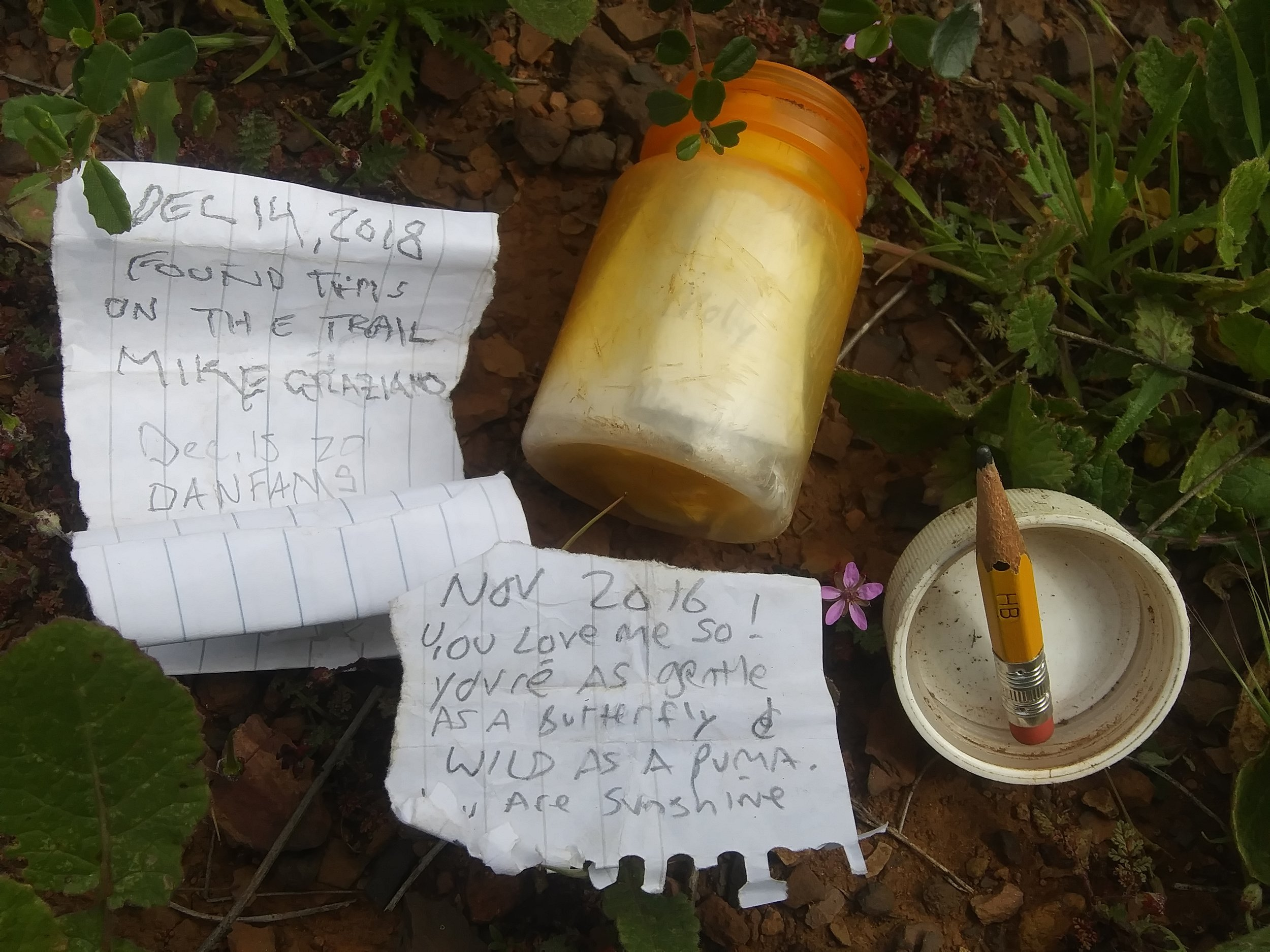 I found this little message in a bottle on top of a peak in Malibu. My old friend, Gnome and I took our dogs on a hike on a beautiful spring day. This squat little pill bottle was tucked into a bush off of the main trail. I read the notes inside, and before replacing them and tucking it back into the bush, I left a little note for Tiff (not pictured).