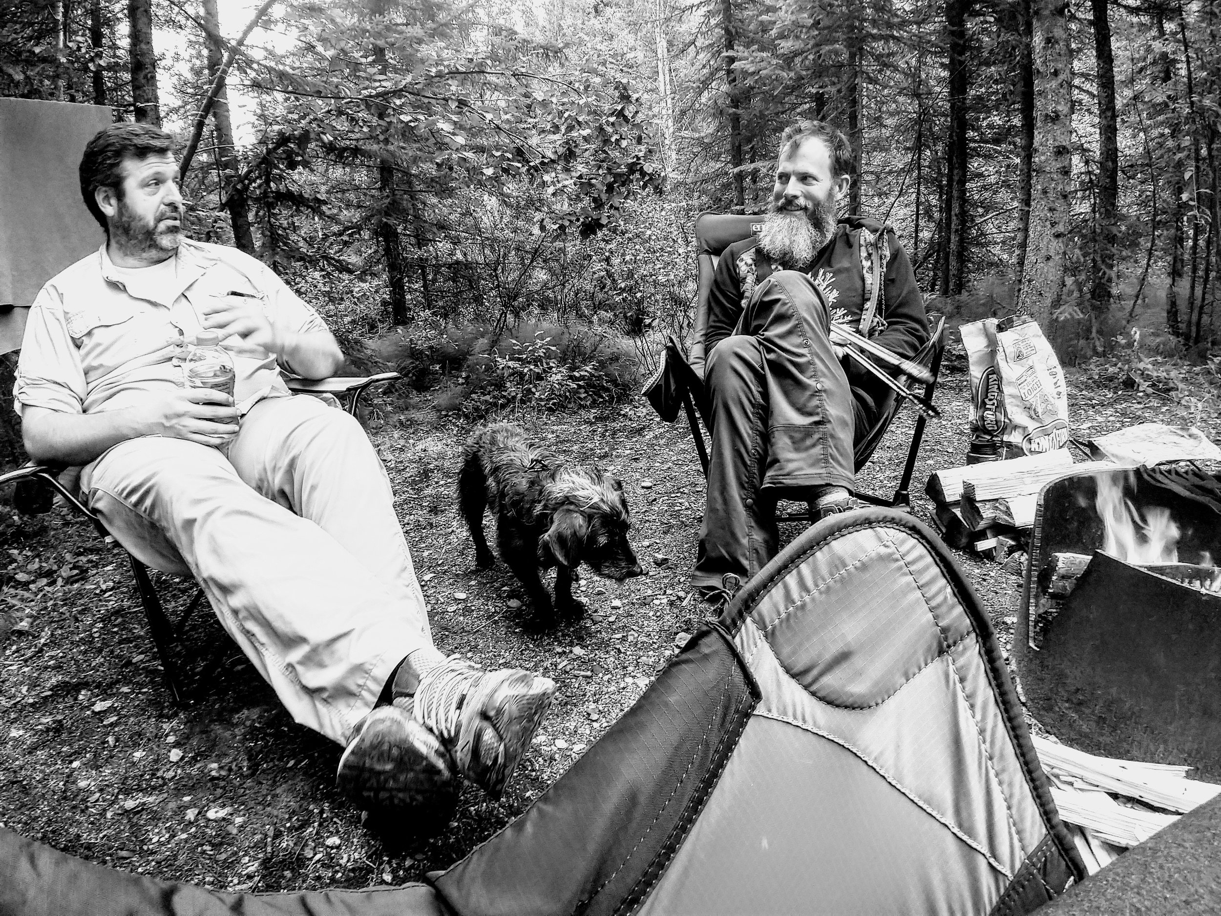Our pal Shooter, Pelé, and a giant man-cricket - Fairbanks, AK