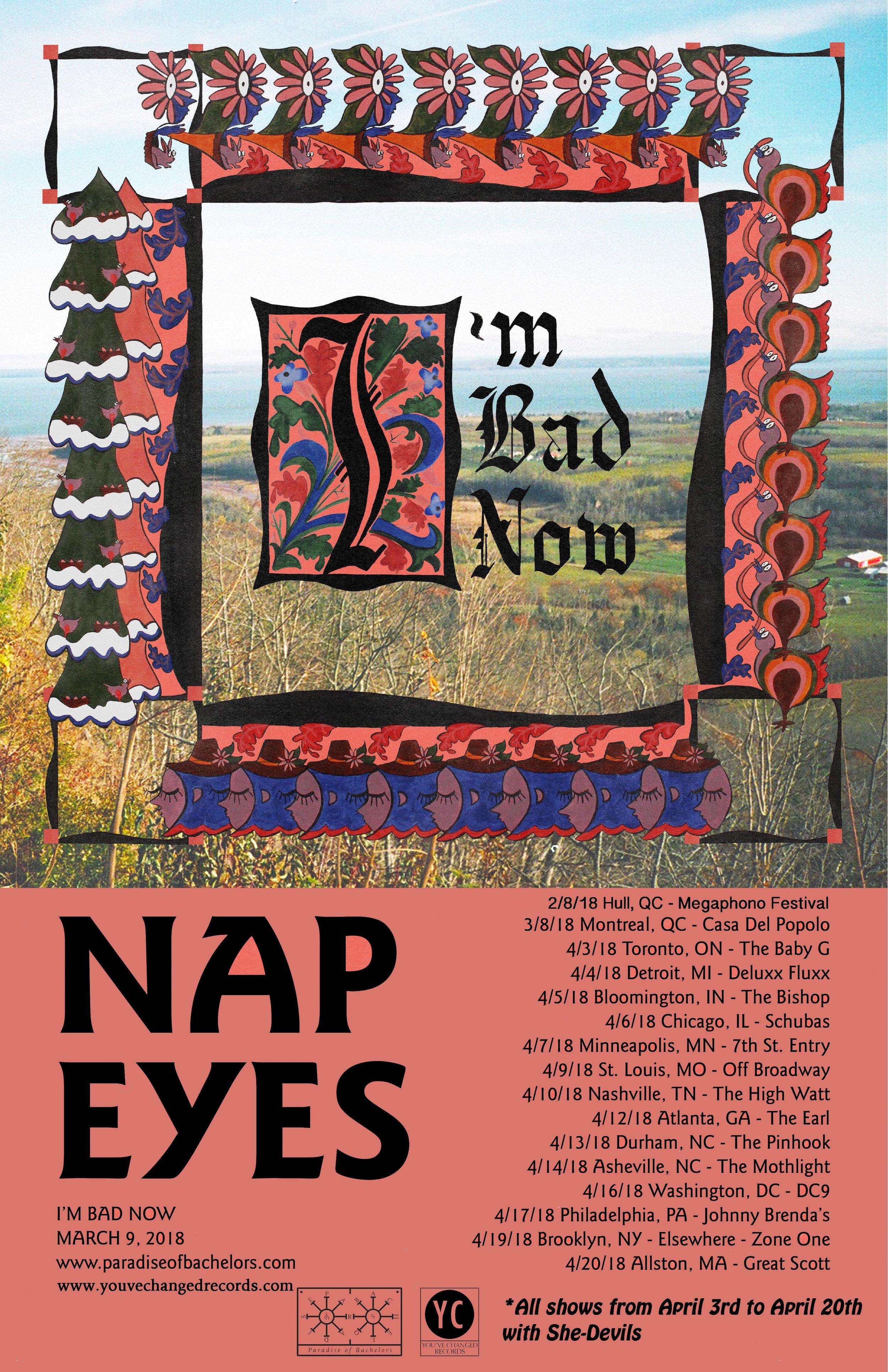 Nap Eyes NA tour 2018_lores.jpg