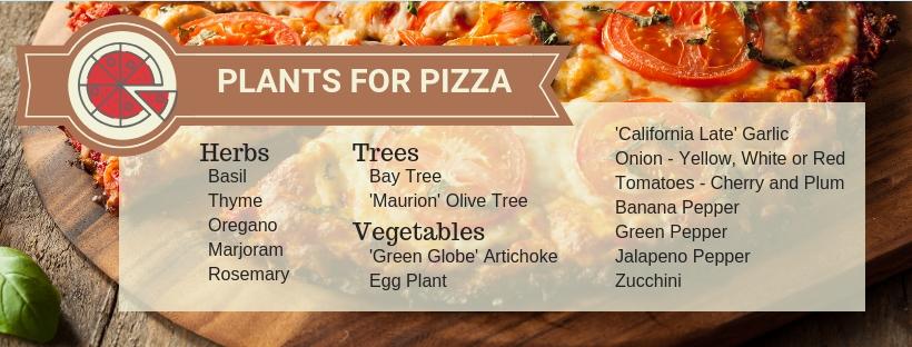 pizza-garden-plant-list