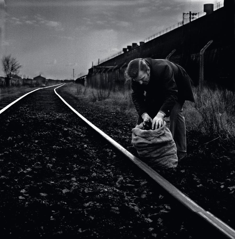044 ex miner 'stealing' coal, Yourkshire  .jpg