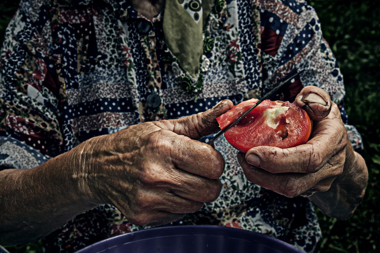 Medjila cutting tomatoes  col v3 .jpg