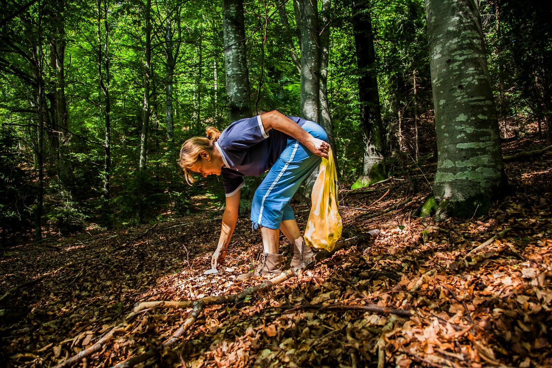 picking mushrooms 1_0943.jpg