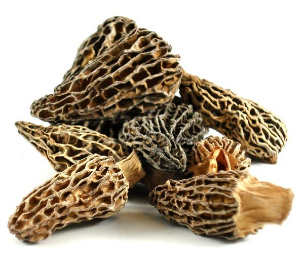 Did you know that Wild Morel mushrooms have 67% of your daily Iron requirement?  Yup, that is what we mean when we say believe in the Power of Mushrooms!