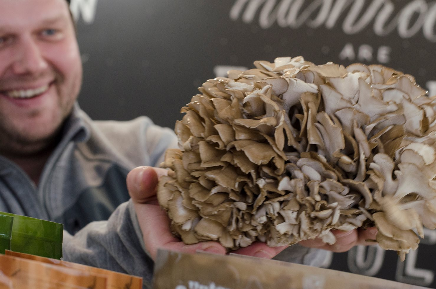 The beautiful Maitake, aka, Hen of the Woods in the Wild.  280% Vitamin D per 100g of serving.