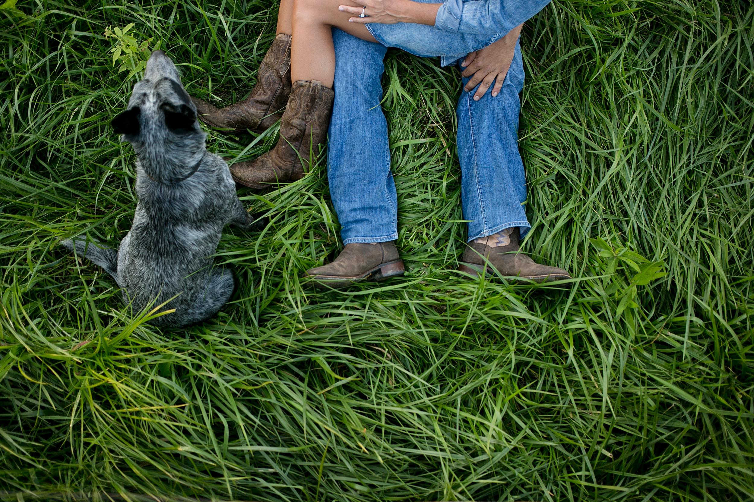 13-kentucky-farm-engagement-dog.jpg