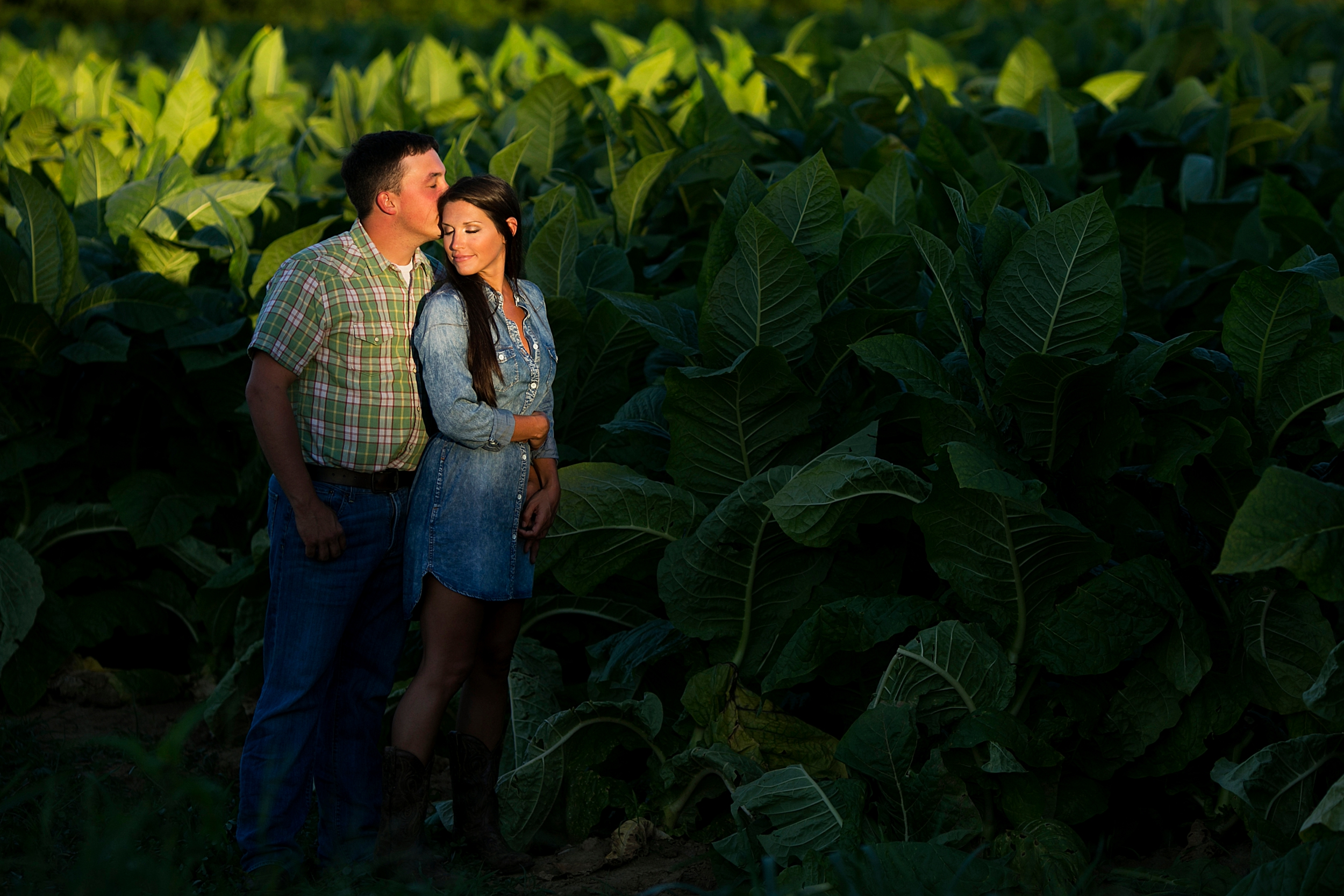 27-tobacco-field-kentucky-engagement-picture.jpg