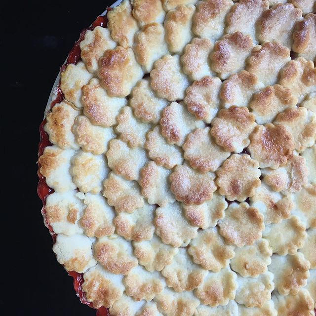Time for our big surprise! Tune in next week to see Lollibakes® founder @dianasproveri on Facebook LIVE with @lisaloeb! Follow Lisa on Facebook and tune in 1:30PST/4:30EST. We'll be showing Lisa how to make a simple pie crust that you can make at home! Plus giveaways for Lisa's fans! Stay tuned for more info! . . . . . . #baking #bakingguru #cheflife #instabake #baked #nomnom #pie #cakestagram #oscars #lisaloeb #cakestagram #lethemeatcake #instacake #cakeporn #cakeoftheday #cakegram #cakecakecake #cakeboss #cakelovers #socalweddings  #cupcakes #cupcakeoftheday #studiocity #beverlyhills #weho #bakinglesson #music #musiccares #grammywinner #lollibakes
