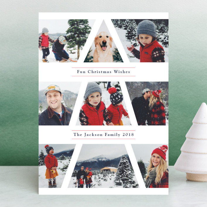 minted-holiday-cards-family-christmas-tree-samantha-joy-events.jpg