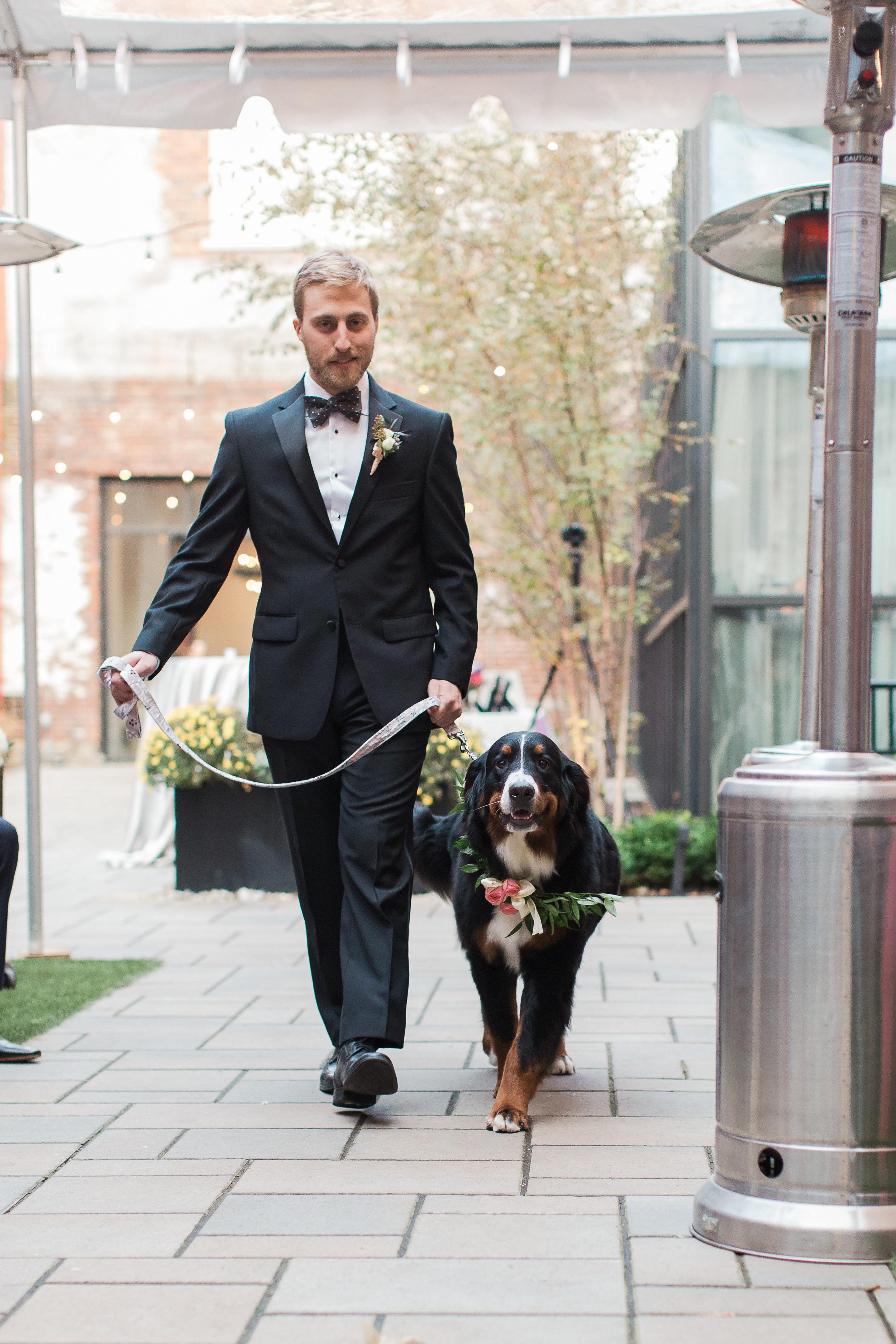 samantha-joy-events-cincinnati-wedding-planner-convington-hotel-kentucky-dog-walking-aisle-wedding
