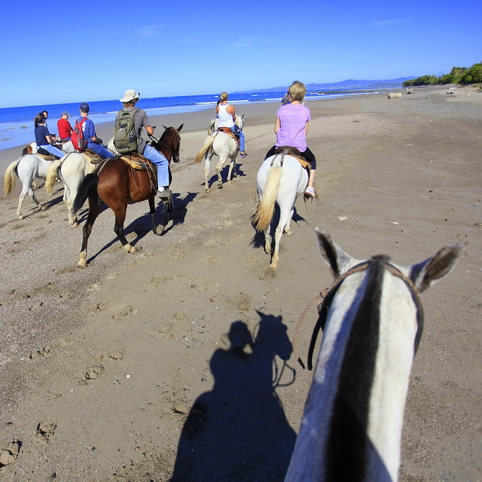 local tours - With an abundance of outdoor offerings, there's always something joyful to do under the Santa Teresa sun. Some of our most popular local activities are: surfing, stand-up paddle-boarding (SUP), horseback riding, ATV tours, deep sea fishing, afternoon sailing, snorkeling, zip-lining, butterfly gardens, waterfall hike, guided nature hikes, and Cabo Blanco Nature Reserve. Working with the highest caliber local tour operators, we schedule tours that make extraordinary memories.