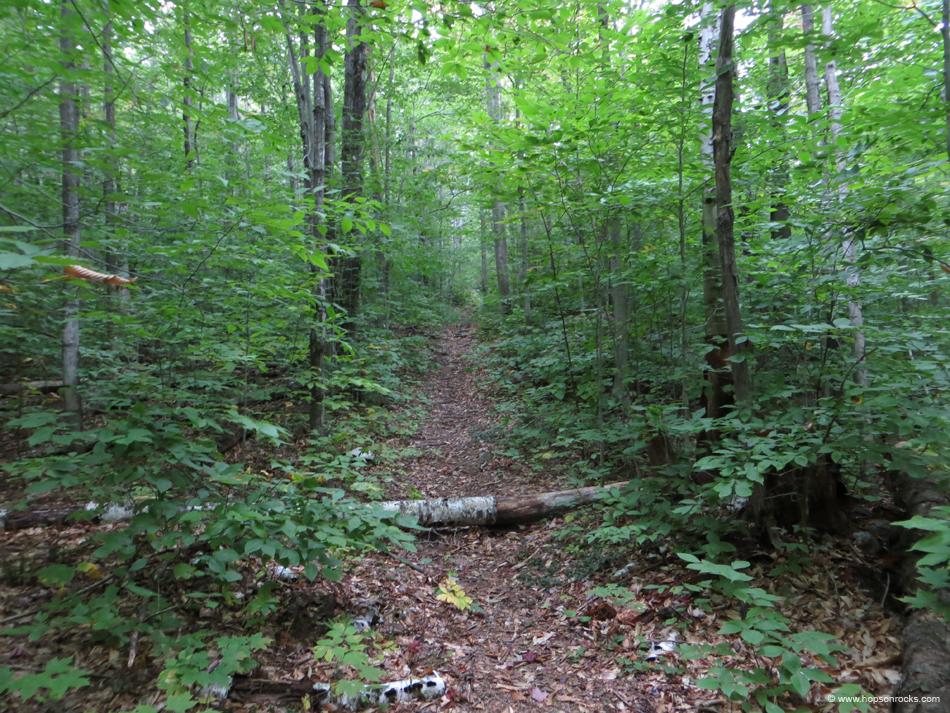 155 Bolles Trail.jpg