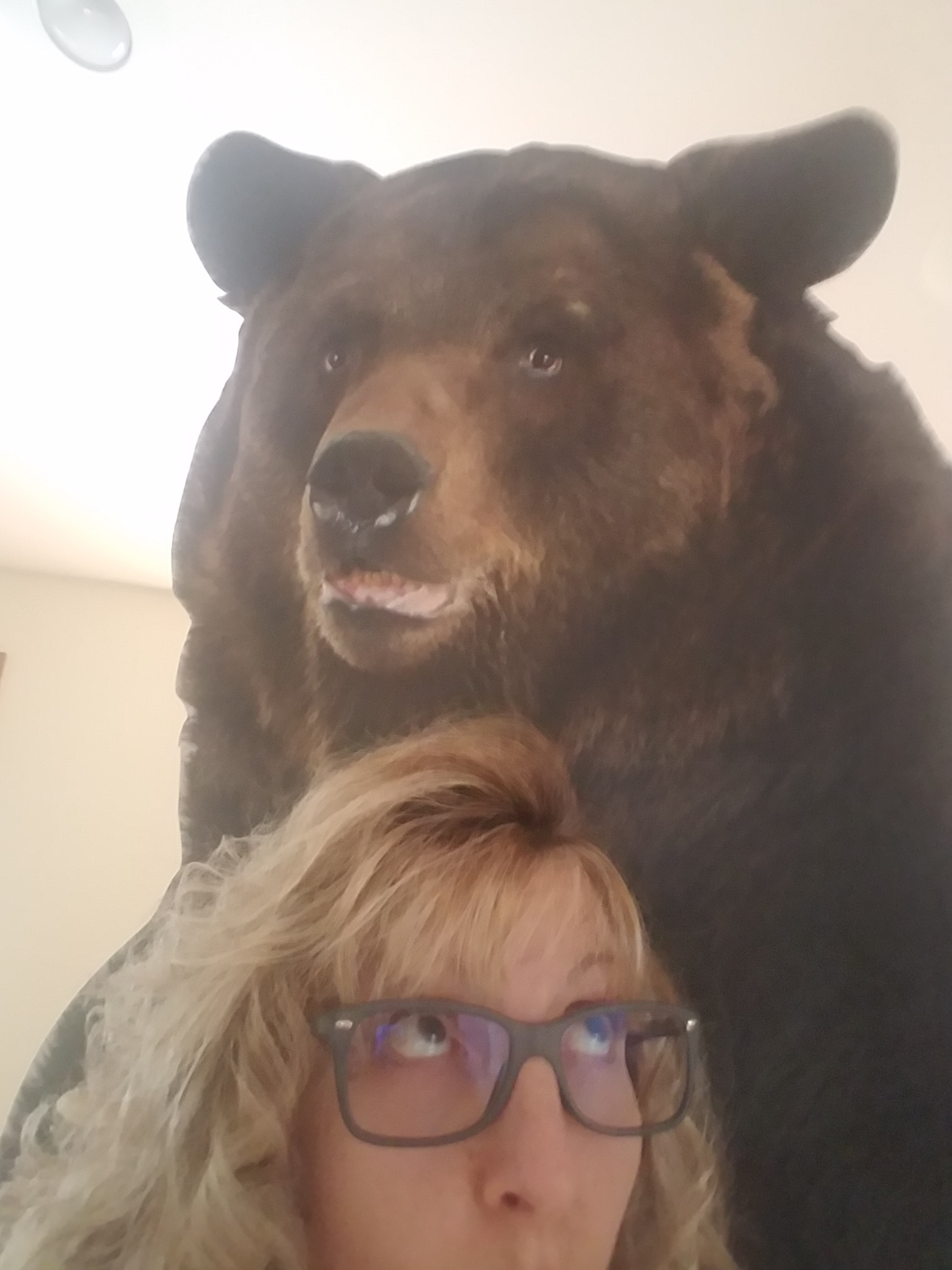 The Bear and Me.jpg