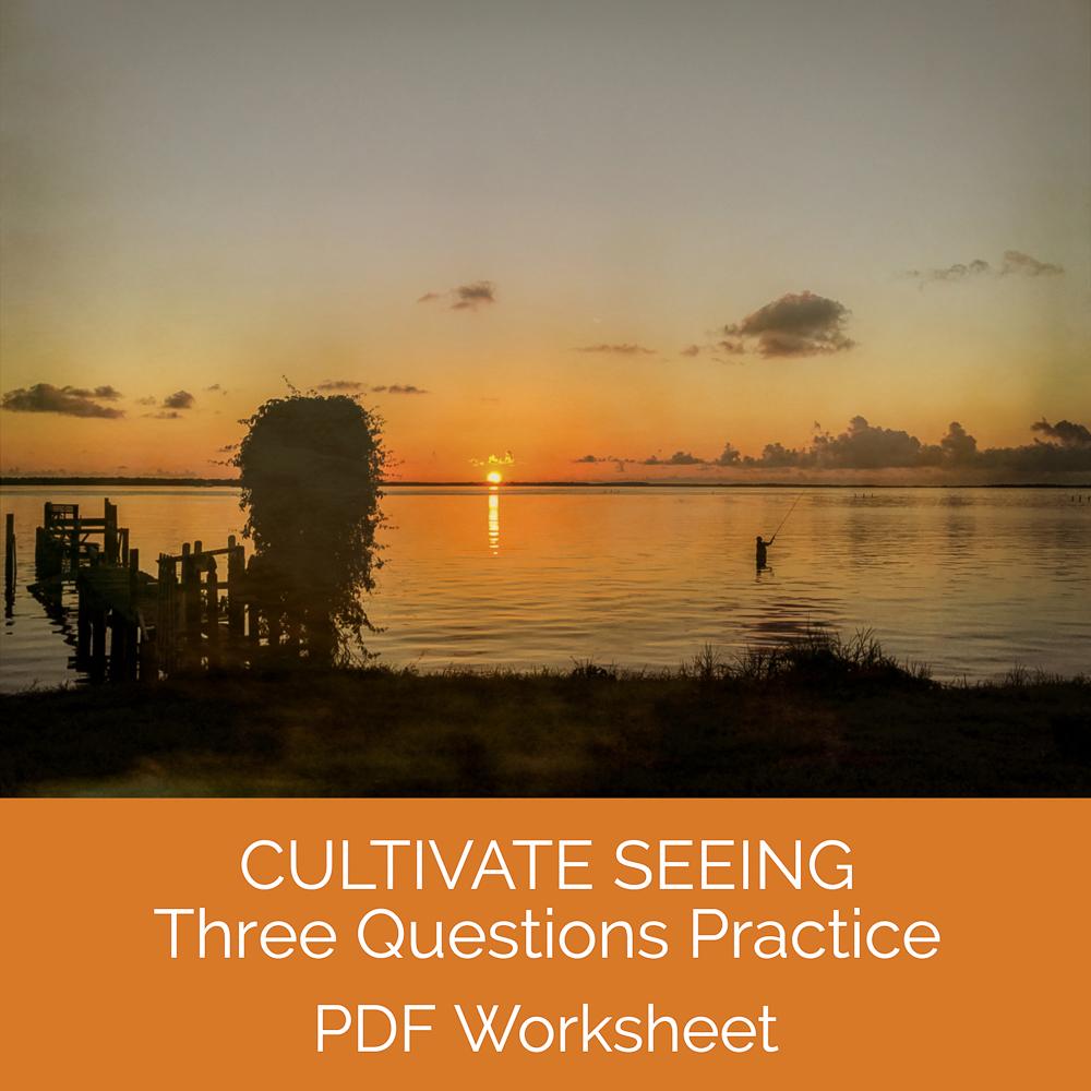Cultivate Seeing.jpg