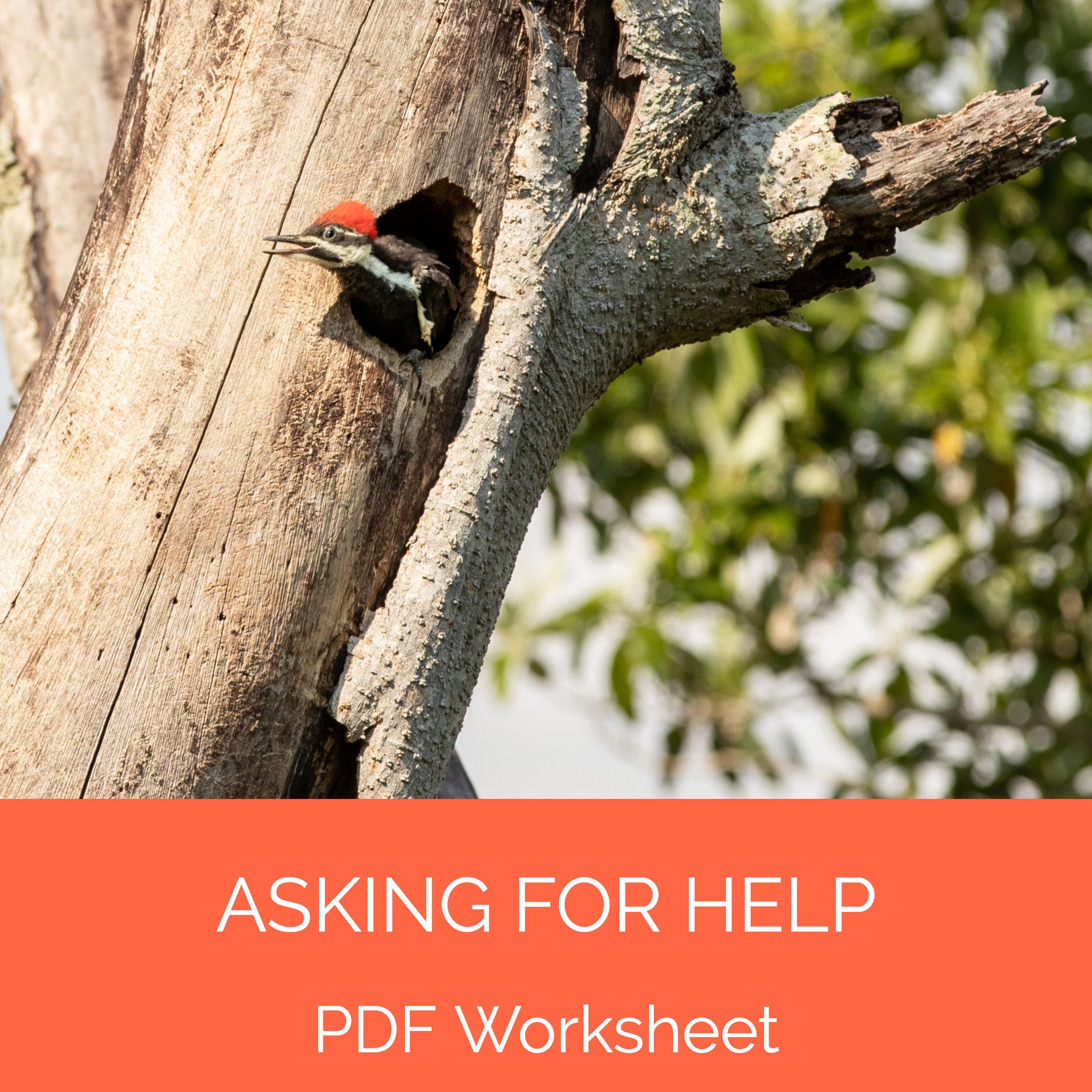 asking for help.jpg