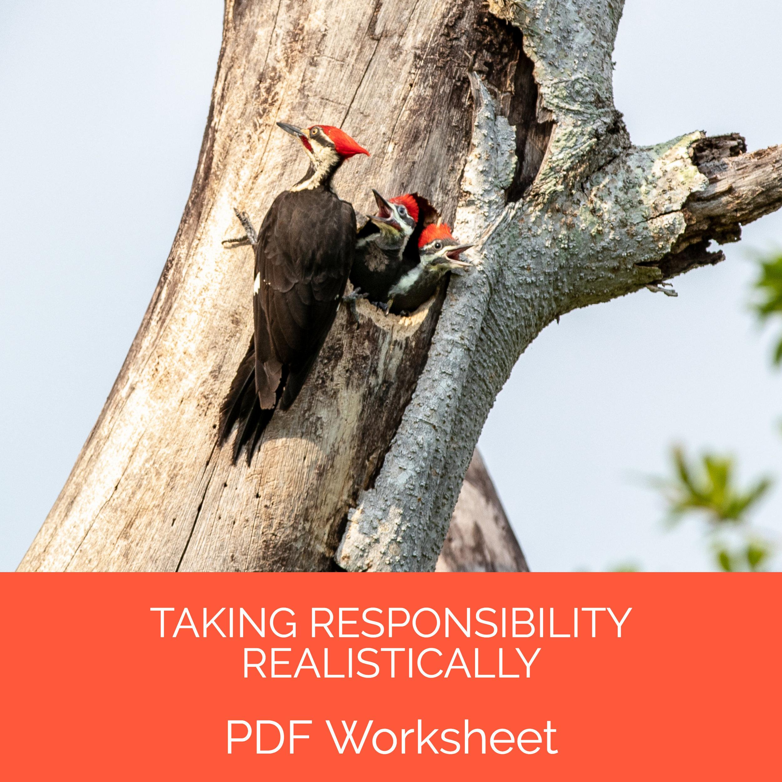Taking Responsibility Realistically.jpg