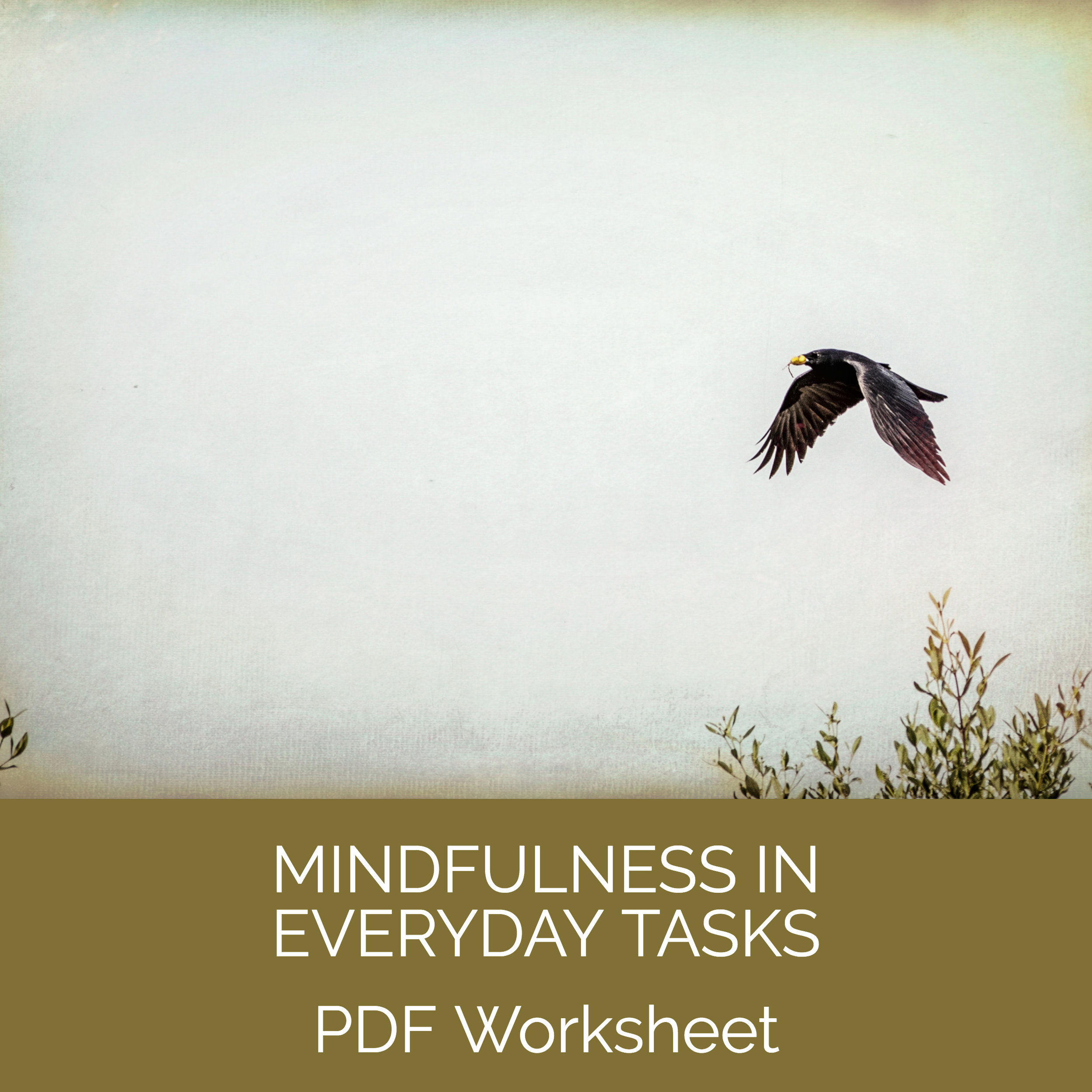 Mindfulness in Everyday Tasks.jpg