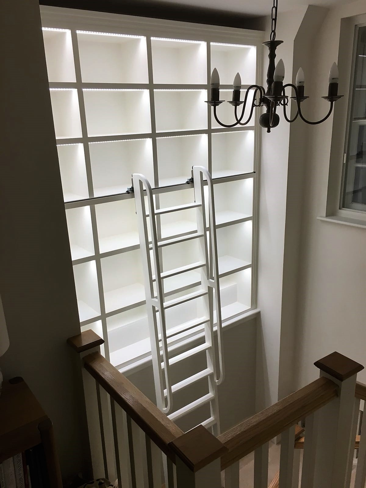 Library with rolling ladder
