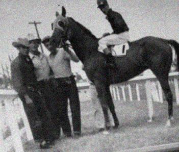 """""""HIPPODROME"""" – July 29, 1955 Jockey (Fred Dodge - up), Owner (J.P. Drader), Trainer (Owner)"""
