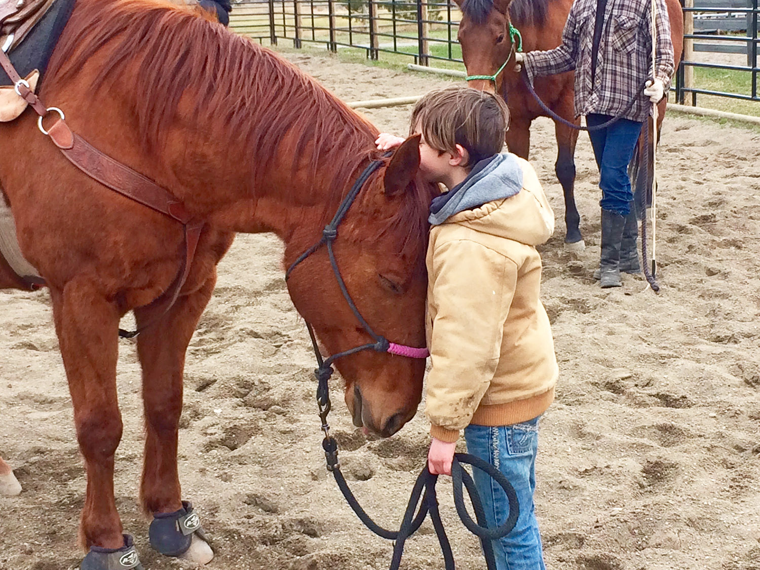 Young_Boy_with_Horse_at_Clinic_web.jpg