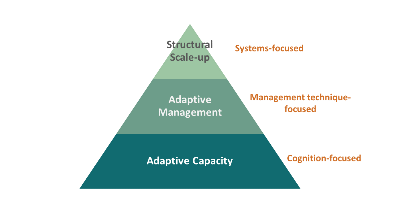 ACapacity-AM-Scale-up Triangle .png
