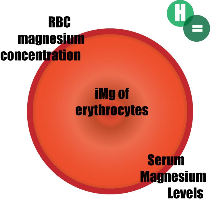 magnesium-tests.jpg