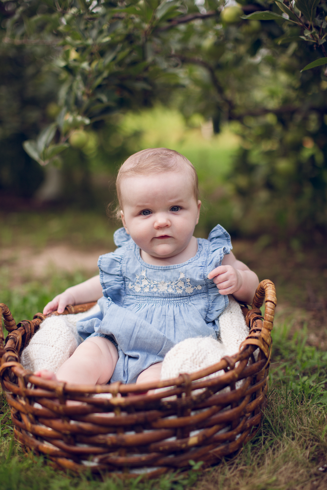 Hattie 6 month photographer lafayette indiana milestone photographer-25.jpg
