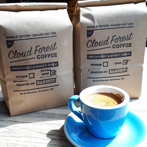 CLOUD FOREST COFFEE