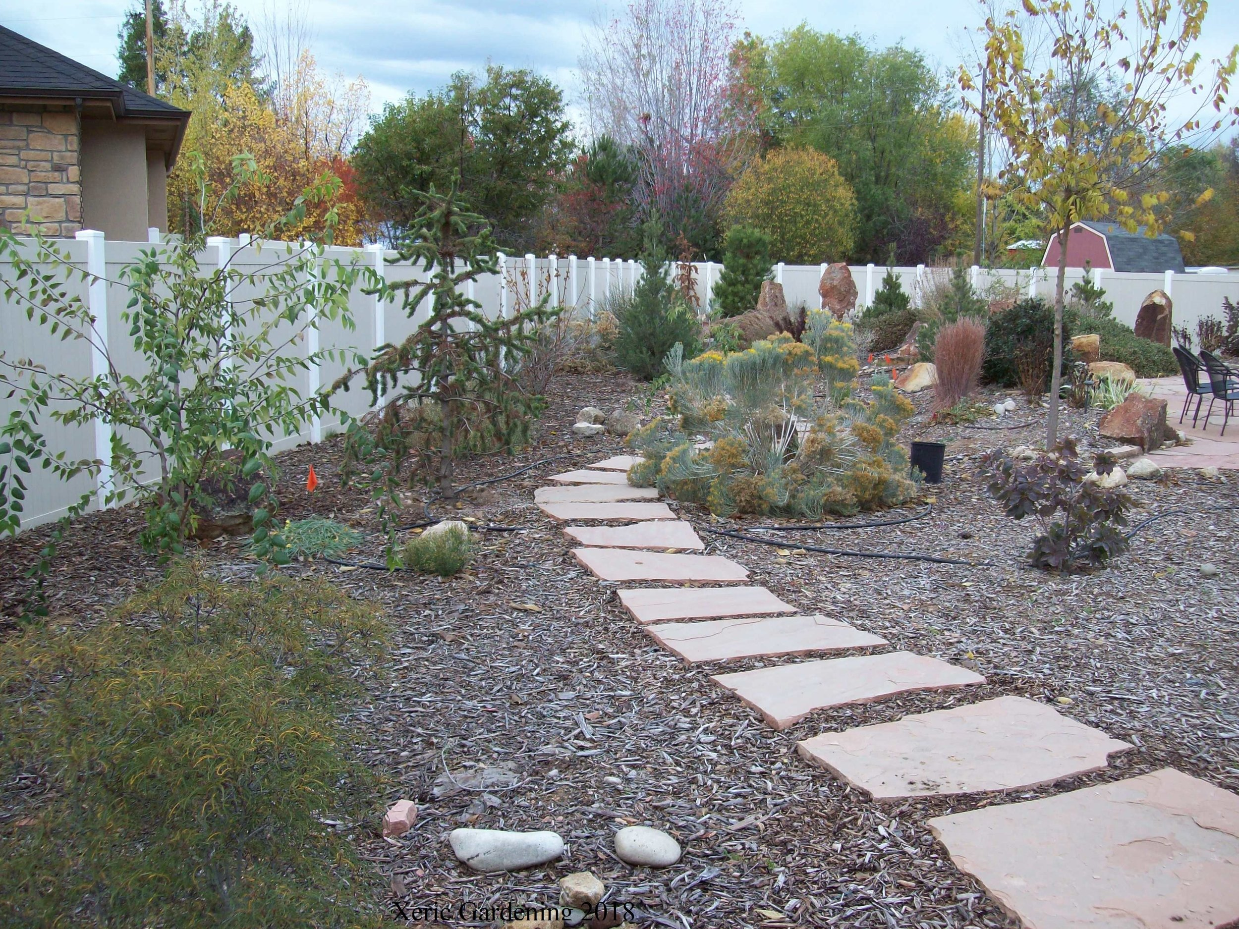 YEAR 3  The last year of hardscaping with pathways was completed. Trees, shrubs, and perennials filling in. Watering starts in mid-May and is once every three weeks.