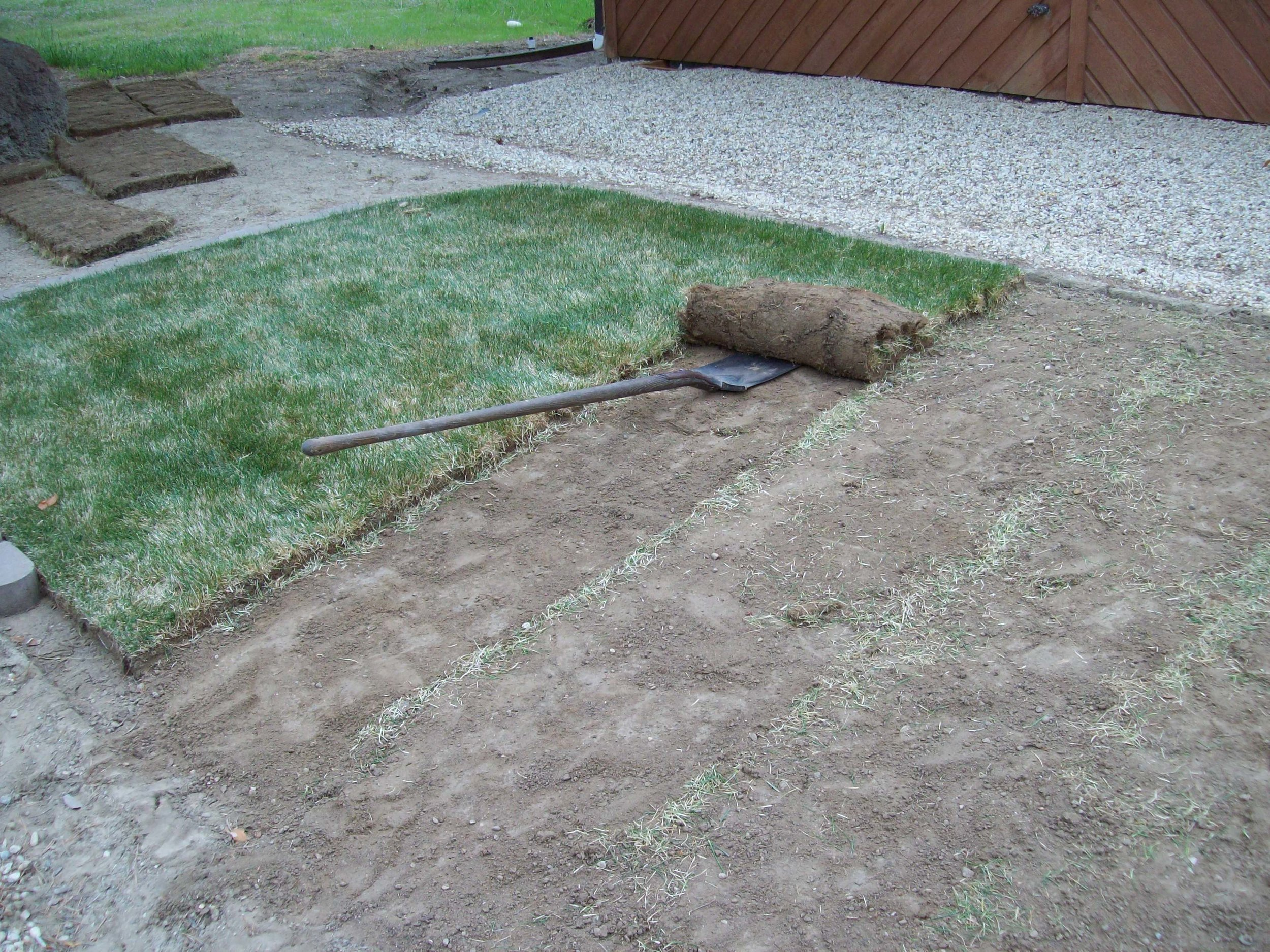 Ingraham Lawn Euth 2.JPG