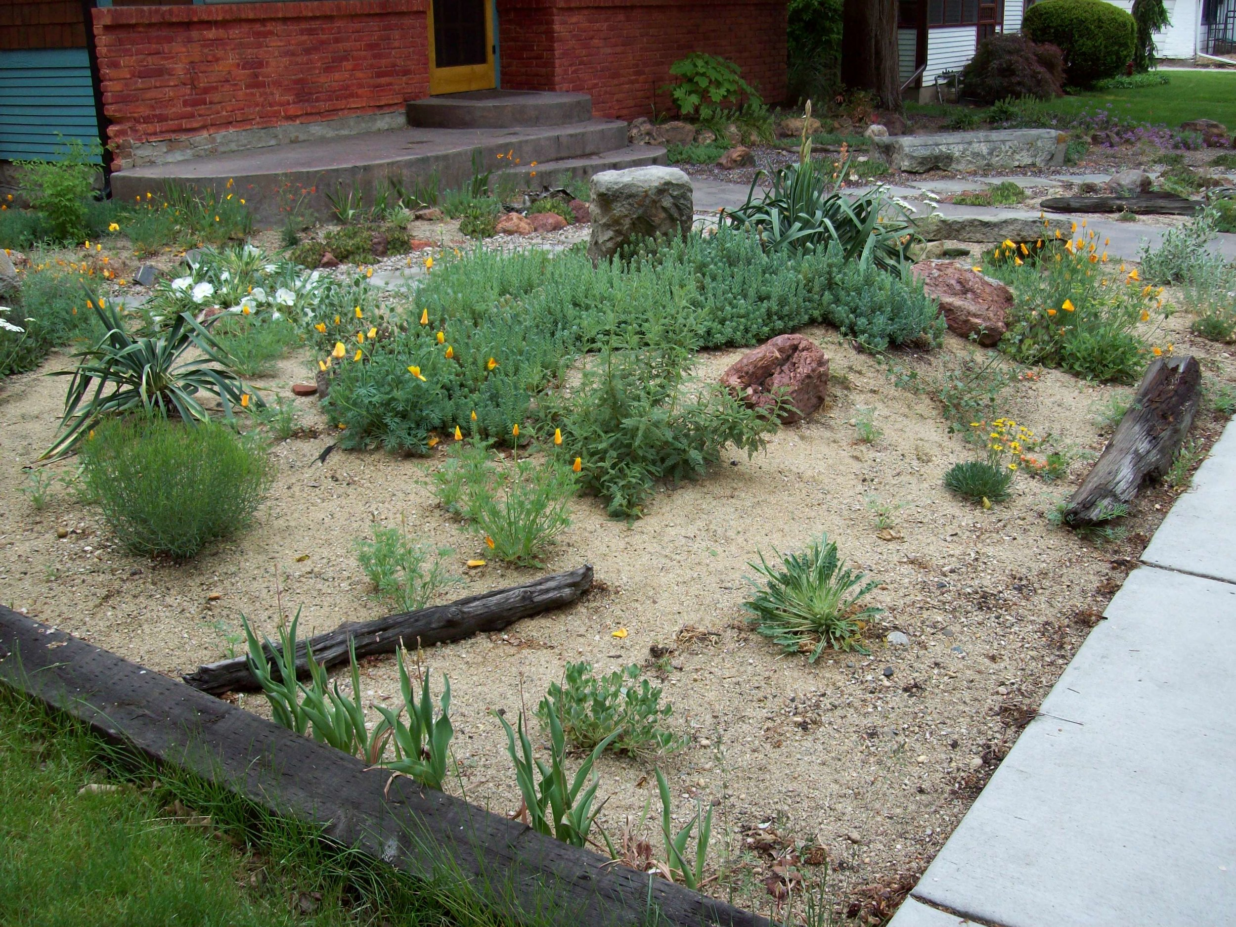 Sand Mulch - Sand mulch has a really beautiful soft look. This sand mulch was put on top of weed barrier cloth. It's important to keep the sand free of leaf litter and debris with regular raking. Note: Sand can be a really excellent medium for germinating weed seeds.