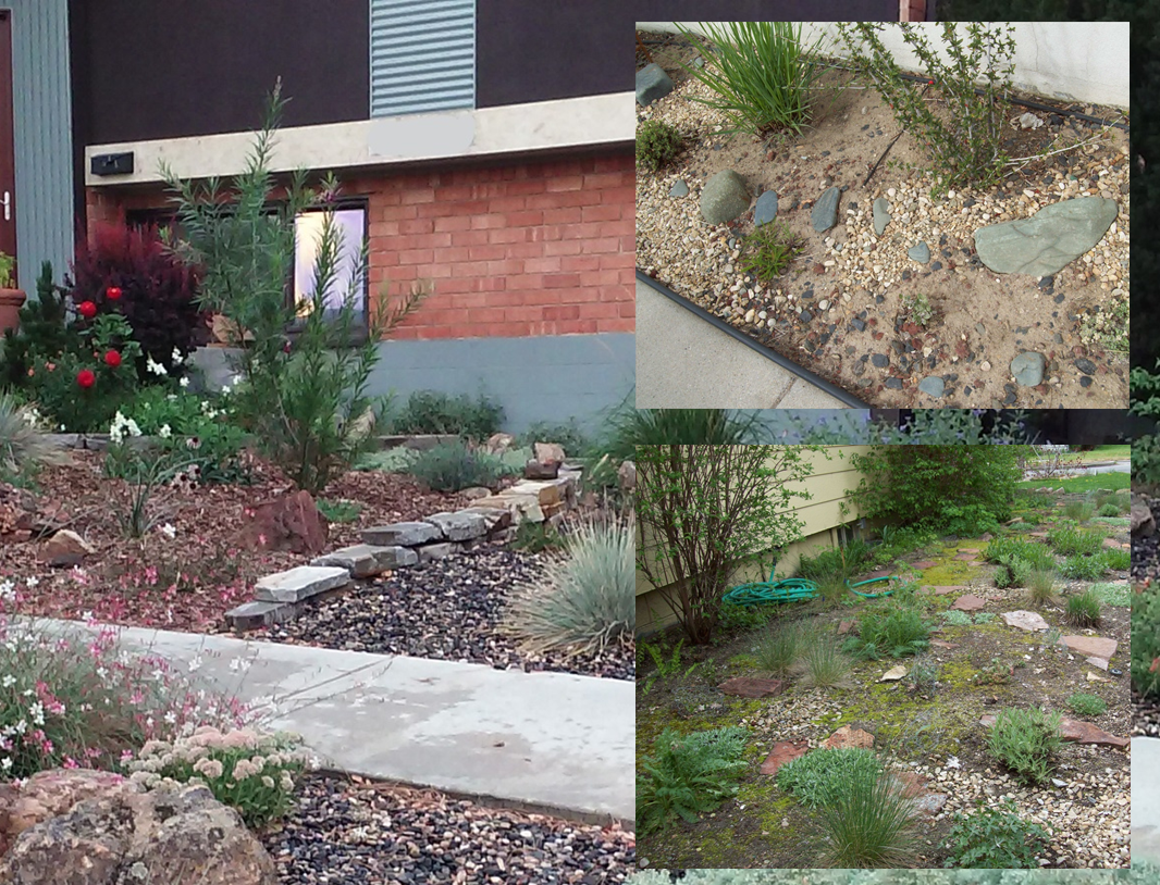 Mixed Media Mulch - Don't feel constrained to one solid style of mulch. The pictures on the right show some examples of mixing textures to make your garden more interesting. On the left, a small stone wall neatly separates wood from gravel mulch.