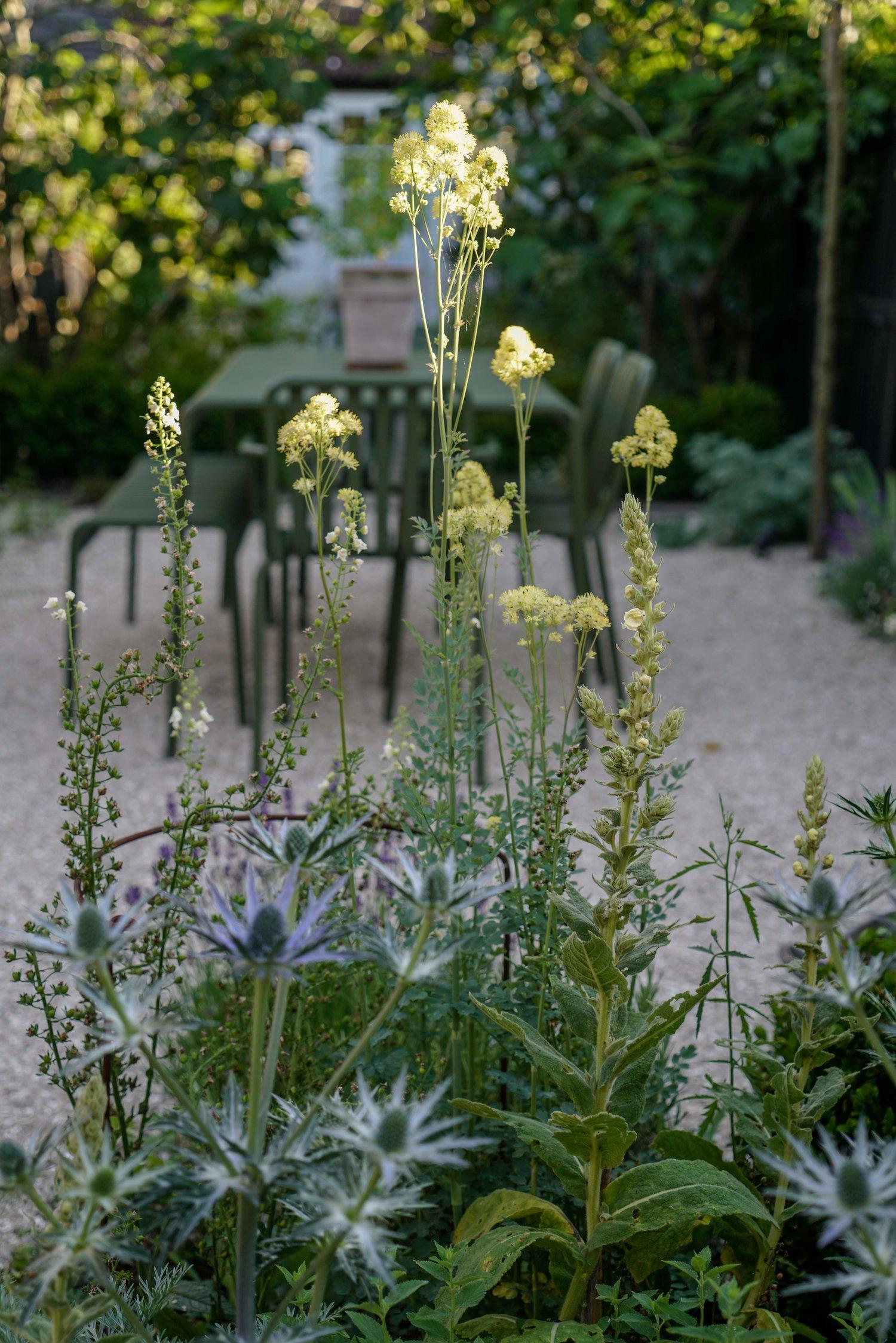 Farlamandchandler+-+Whitstable-+Kent+-+Dining+Terrace+-+Gravel+Garden+-+Drought+Planting+2.jpg