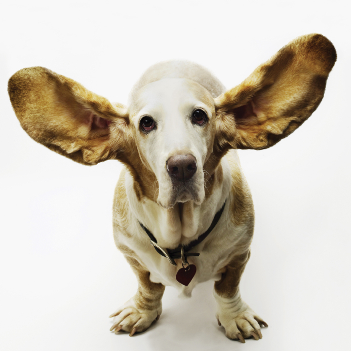 Calming Upset People Fast with an EAR Statement® -