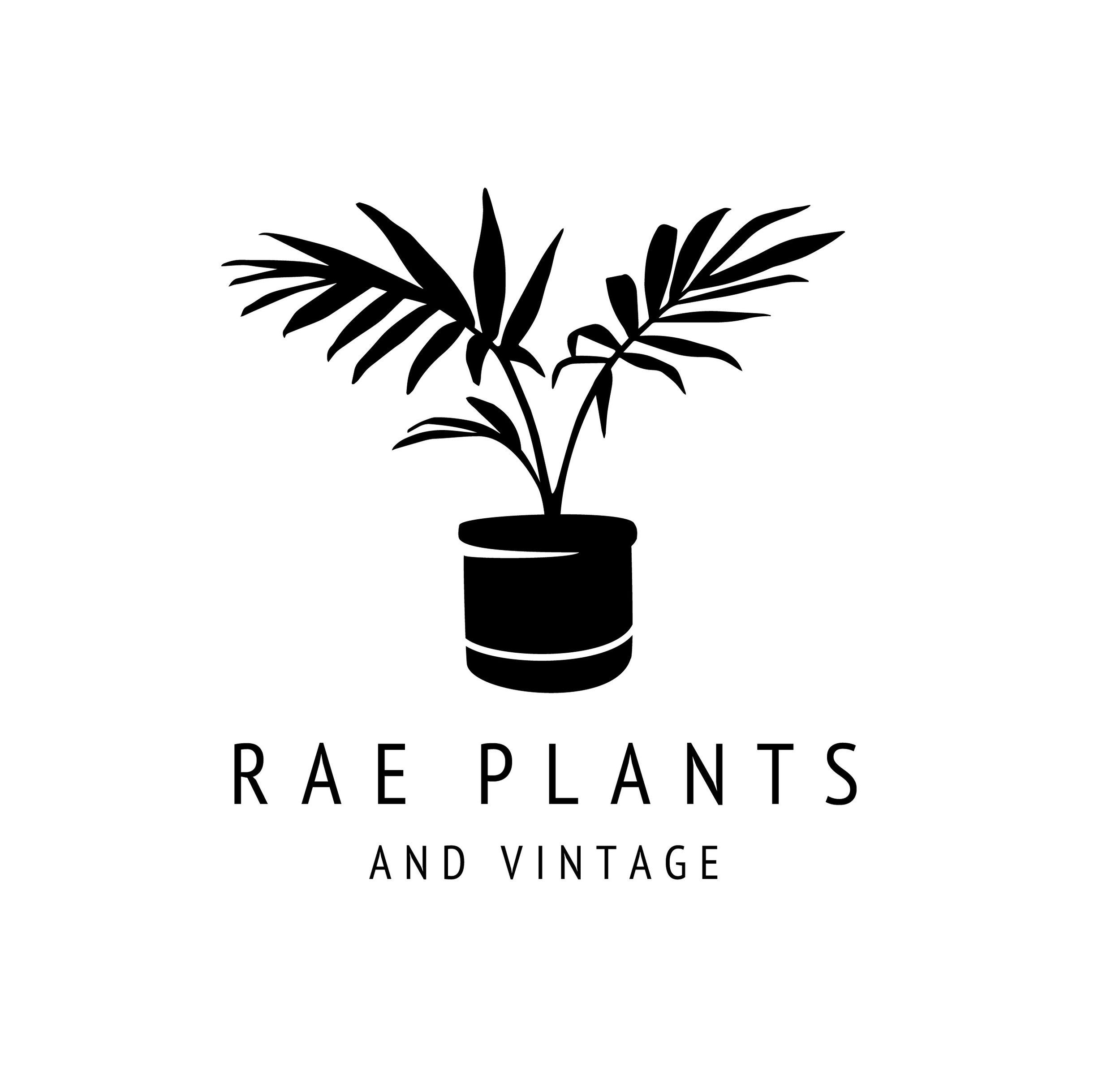 Rae Plants Logo