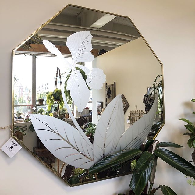 Spotlight on all the amazing mirrors currently in our booth @pacificgalleries !! ✨✨ •gorgeous mid century lg floral mirror, $320 •hanging metal shelf with mirrored back, $48 •vintage rectangular mirror from Mechanical Mirror Works, NYC, $85 •mini duck mirror, made in Lynwood, WA, $48 •vintage small wicker mirror, $48 •small wood mirror with antique glass, $35 • • • • •#interiordesign #houseplantclub #parlorpalm #houseplants, #indoorplants, #airplants, #plants, #plantsofinstagram, #plantstyling, #plantsmakepeoplehappy  #seattle #shopsmall #smallbusiness #jungalowstyle #interiorinspirations #vintage #homedecor #seattle #plantsarefriends #hangingplants #fern #fremontvintagemall #rattanfurniture #midcenturymodern #tillandsia #pacificgalleries #sodo #mirror