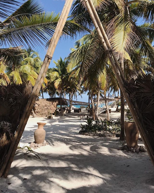 Pase usted a lugar sin tiempo! . . . Credist to #traditionalflawours #summittulum2019 #seafood #fogonwhisperers #tulumbeach #honetskitcken #placewithouttime SianKaan #cheftable