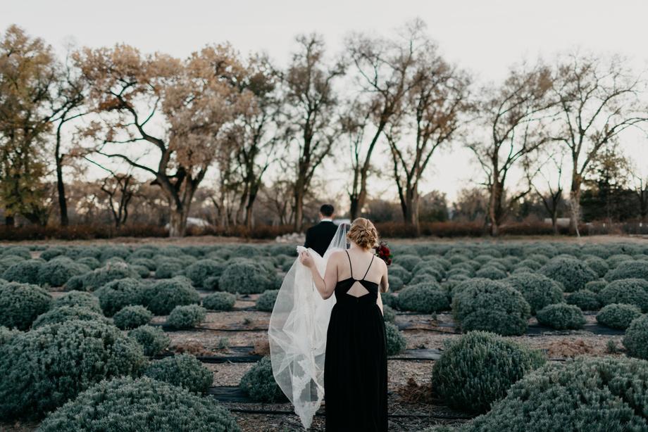 657-albuquerque-wedding-photographer-los-poblanos.jpg