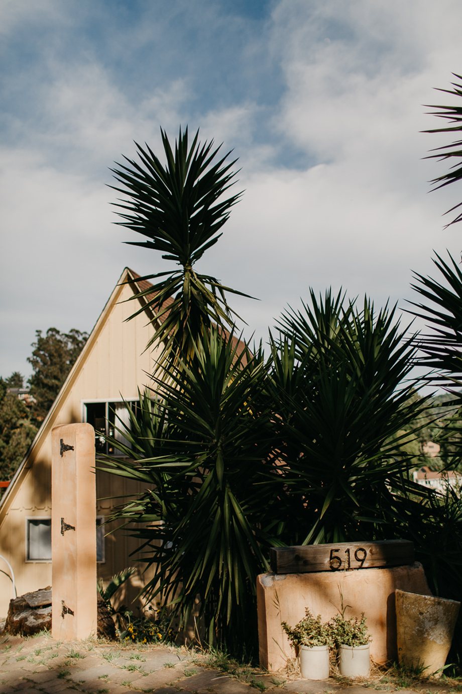 790-destination-wedding-photographer-san-francisco-california--the-livelys.jpg
