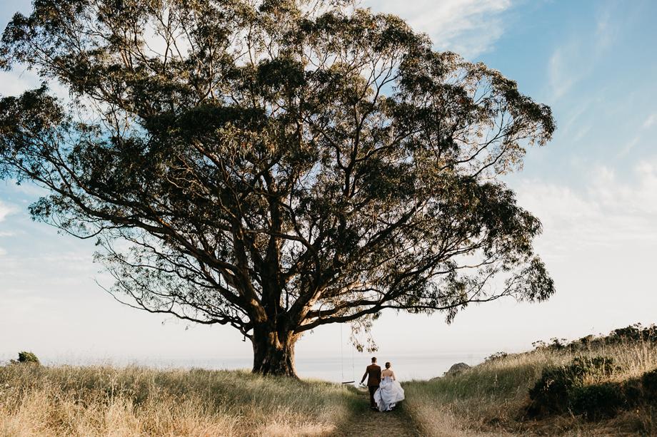 835-destination-wedding-photographer-san-francisco-california--the-livelys.jpg