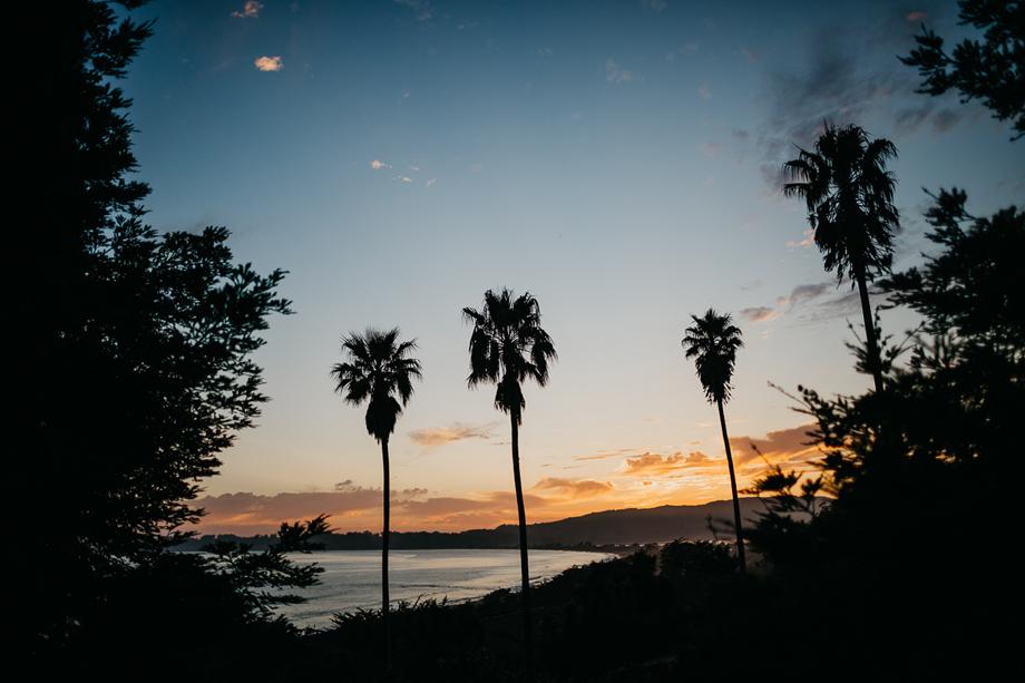 863-destination-wedding-photographer-san-francisco-california--the-livelys.jpg