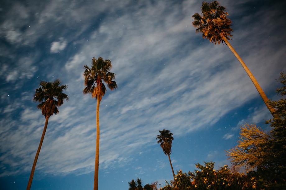 872-destination-wedding-photographer-san-francisco-california--the-livelys.jpg