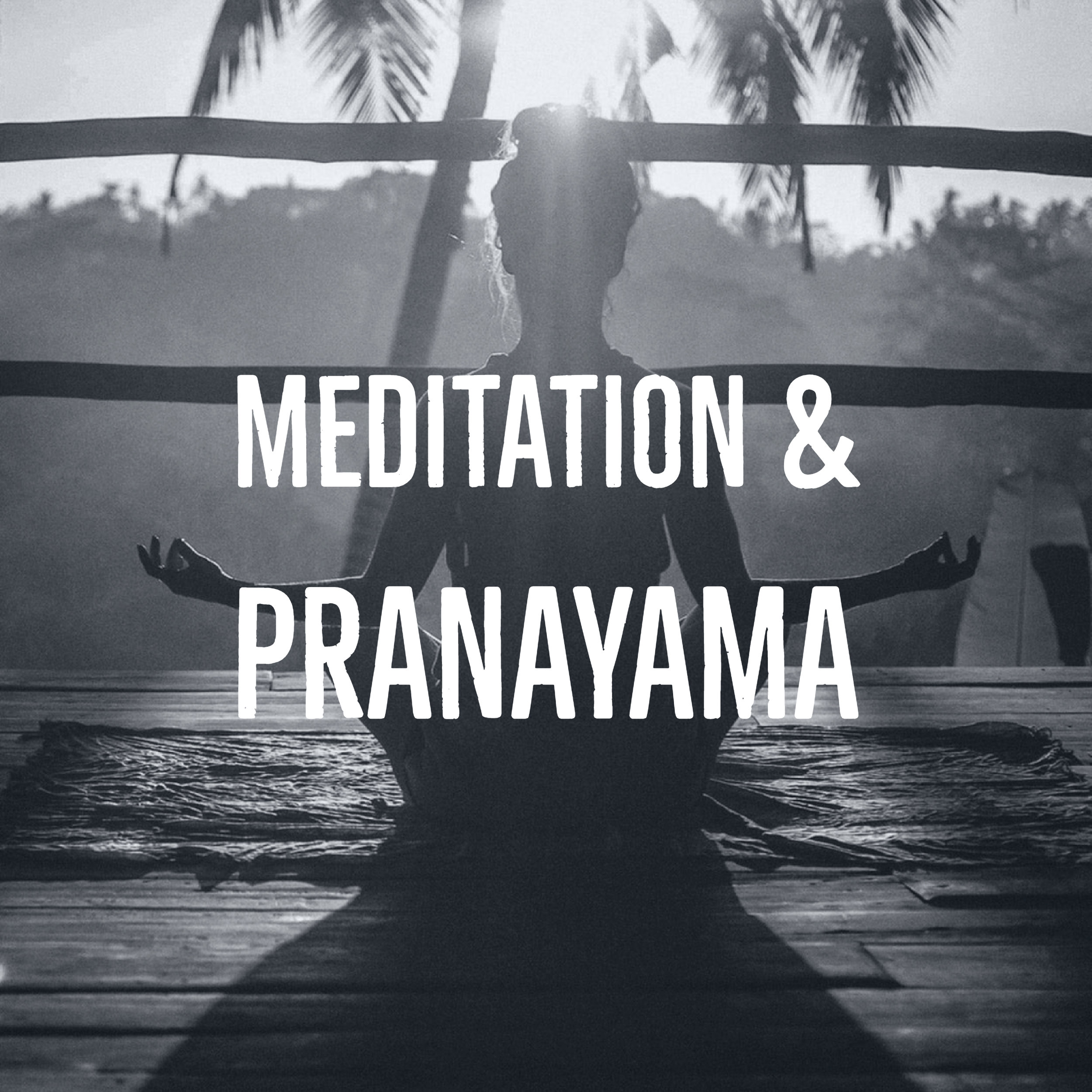 Meditation & Pranayama - This 45 minute class begins with a discussion of our breath and a weekly practice of directing our breath to support our well-being. Transitioning to meditation, we will discuss and practice various postures, styles, and techniques of meditation. This class is open to all who are looking to calm the mind and deepen their experience with the mind/body connection and manifest peace.