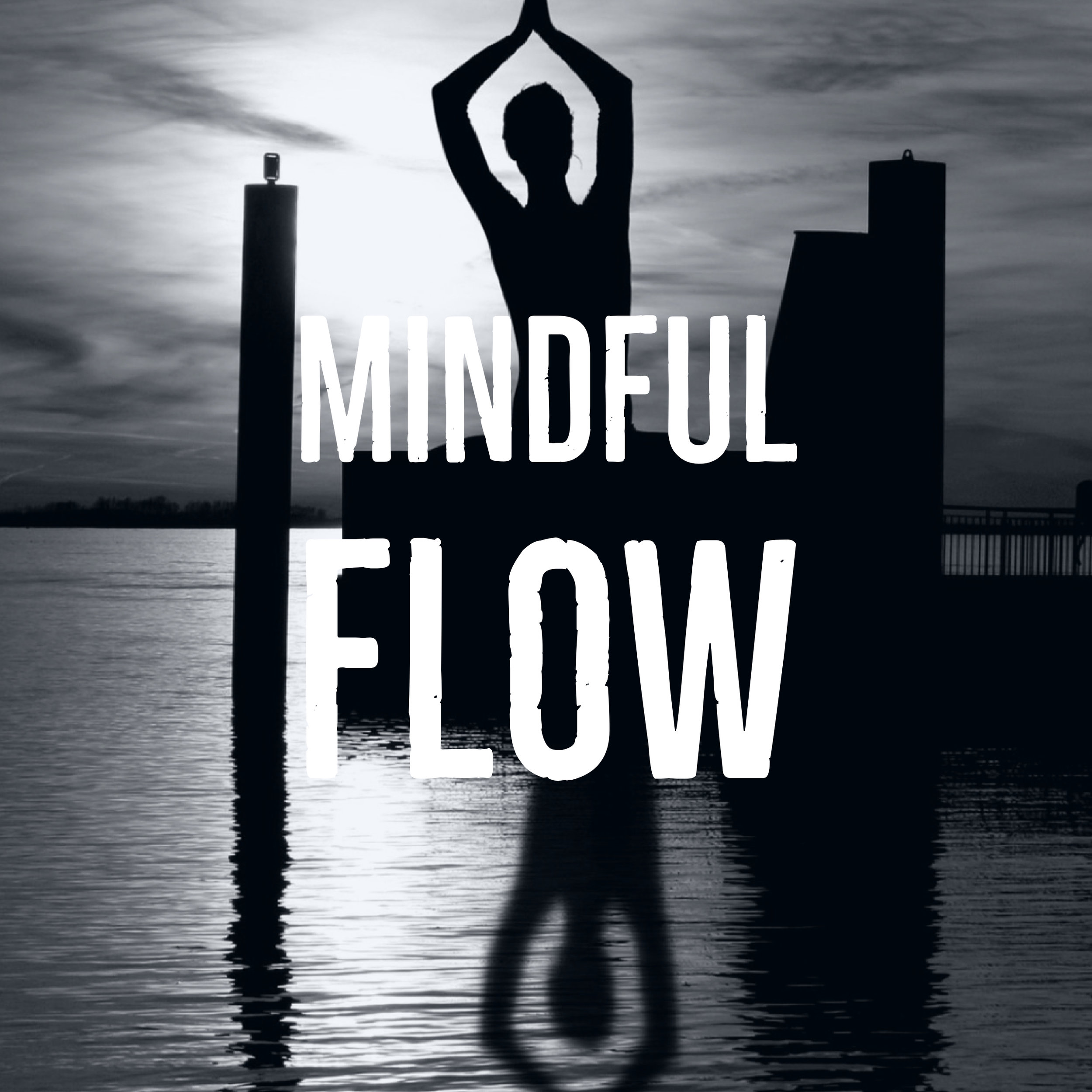 "Mindful Flow - This is a one hour class of a ""mindful"" vinyasa flow, with cues on alignment and connection to the breath. Good for students of all levels who are wanting to deepen their breath work and meditative practice, while building on the foundations of yoga. We will move with intention, strengthen the body, and quiet the mind."